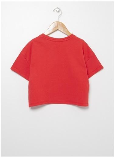 Limon Company Limon Kız Çocuk Kırmızı Bisiklet Yaka T-Shirt Kırmızı
